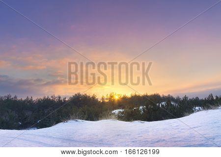 winter sunset bright photo / bright winter photo nature landscape