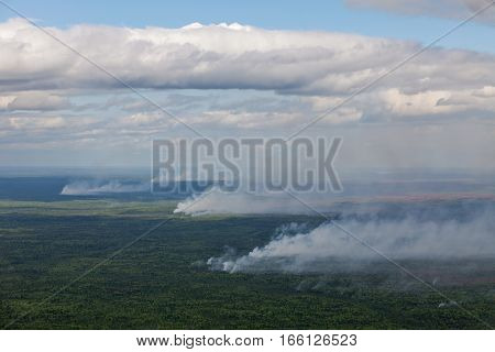Aerial View of wildfire in forest during flight in hot summer day.