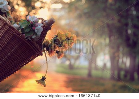 wicker basket with flowers and a drink at sunset in the park / spring picnic outdoors