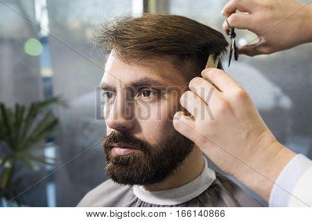 Bearded Businessman Having Hair Cut
