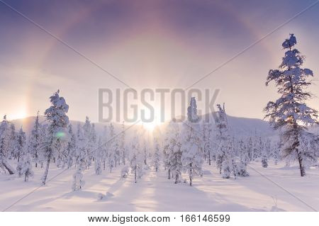 Halo effect over winter landscape in Magadan region