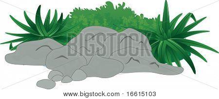 Illustration of rocks and palnts