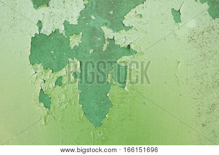 Green metal plate with cracked paint and big paint spots because of time as background metal wall with rusty spots and cracked paint as texture toned to color
