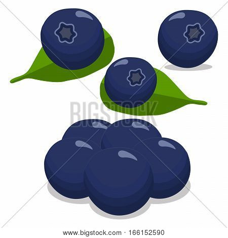 Abstract vector illustration of logo for the theme of the berry blueberry.