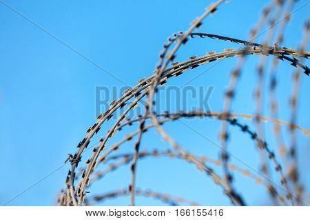 Barbed wire with hoarfrost on it in front of blue sky