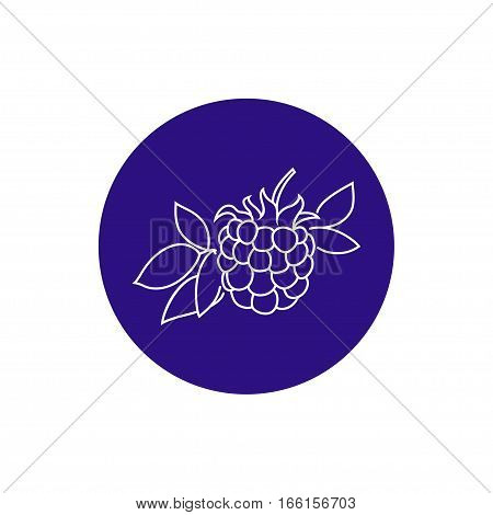 Blackberry Colorful Round Icon, Dewberry Fruit  Berry Icon