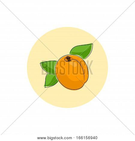Apricot Round Icon, Colorful Apricot Fruit Icon