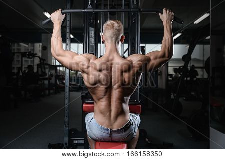 Back Muscle Man's Back