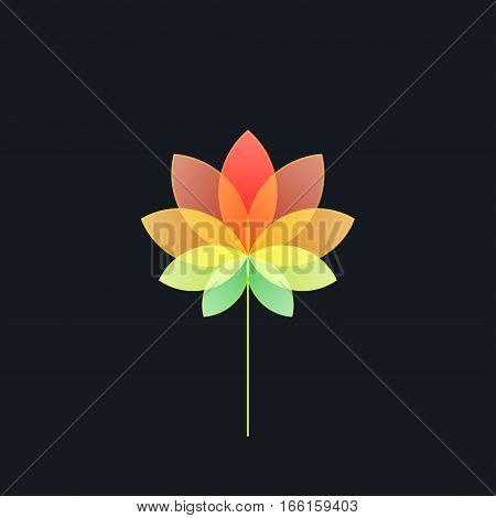 Bright Multicolored Translucent Flower on Black Background ,Design Element
