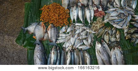 Selling saltwater fishes and prawns on top of banana leaf photo taken in Jakarta Indonesia java