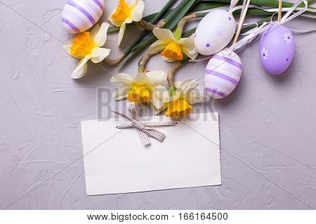Easter background. Decorative violet eggs and yellow daffodils or narcissus flowers and empty tag on grey textured background. Selective focus. Place for text.