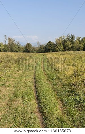 Valassina (Lecco Lombardy Italy): landscape in september an overgrown path along the bicycle itinerary from Milan to Como lake