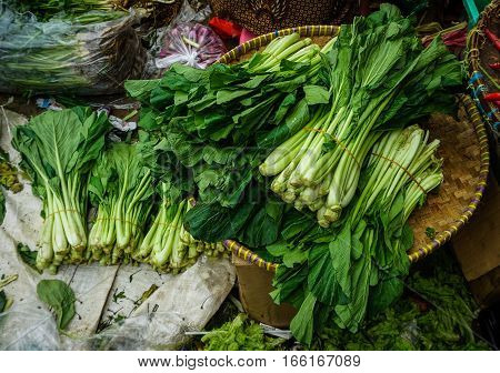 Mustard greens as one of favourite vegetable in Jakarta Indonesia java