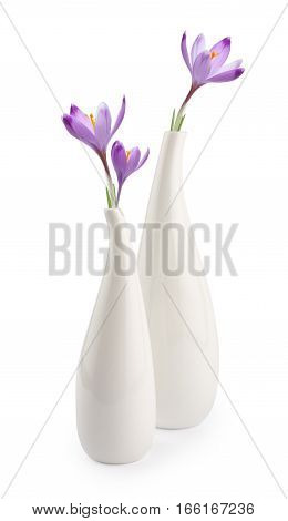 Two Elegant White Vases With Spring Flowers