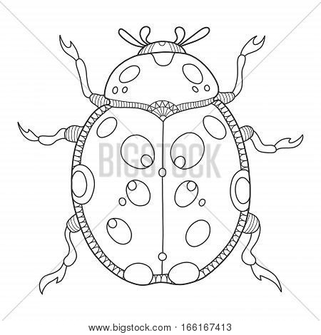 Ladybug coloring book vector illustration. Anti-stress coloring book for adult. Tattoo stencil. Black and white lines. Lace pattern