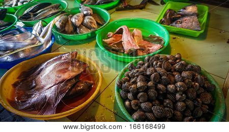 Clams and fishes at fishmonger photo taken in Jakarta Indonesia java