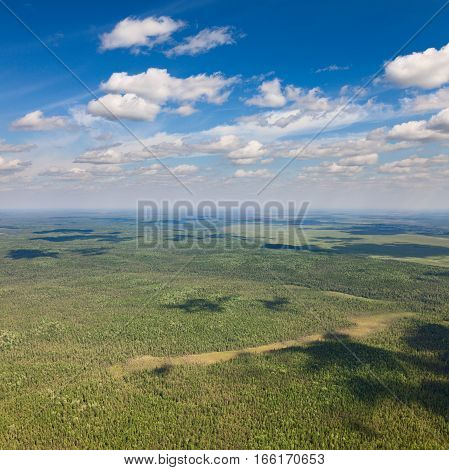 Aerial view of forest on boundless plain under white clouds.