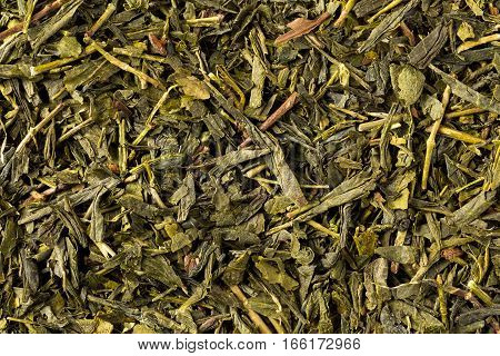 Dried leaves of green japanese bancha tea full frame image background.