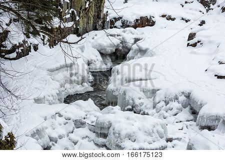 Animal tracks in the snow next to water.