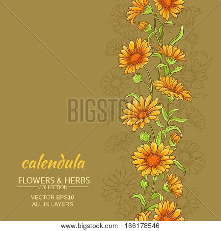 calendula flowers vector pattern on color background