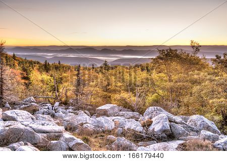 Bear rocks sunrise during autumn with rocky landscape in Dolly Sods West Virginia