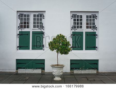 Two identical green windows with a tree in the middle photo taken in Jakarta Indonesia java