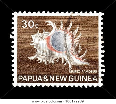 PAPUA NEW GUINEA - CIRCA 1968 : Cancelled postage stamp printed by Papua New Guinea, that shows Ramose Murex.