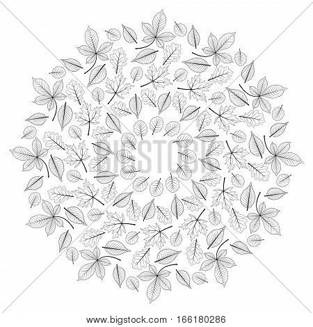 vector black and white round autumn leafy mandala - adult coloring book page