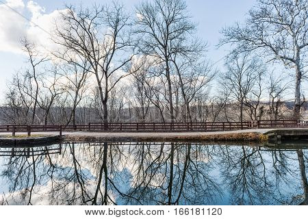 Reflections of trees in lake with trail path at Great Falls National Park