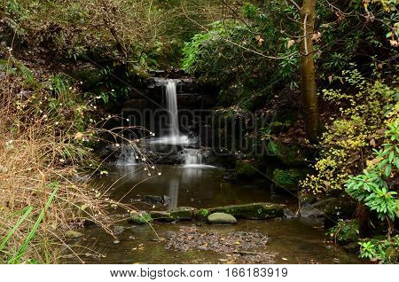 A view of a waterfall in a park in Dunfermline