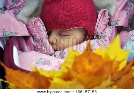 beauty chest child newborn sleeping closeup on a background of yellow leaves