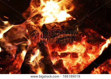 Burning log fire in fireplace. Closeup flame. Barbecue coal blazing
