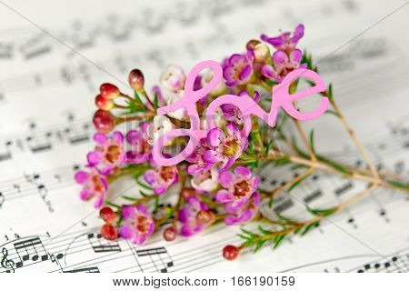 pink flowers on musical composition with the word love