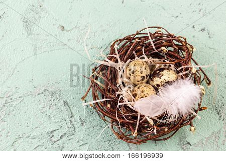 Three quail eggs in the nest for easter on wooden light green background