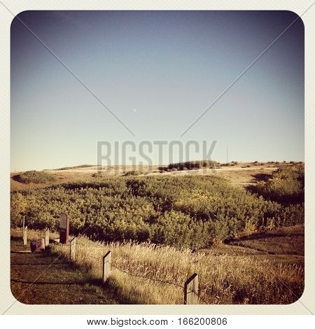 Scenic landscape view of park meadow in early spring with clear sky hills and trees. Wooden fence posts and yellow grass hill in foreground. Instagram effects