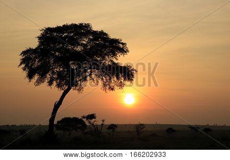 Sunrise over Murchison Falls National Park Uganda