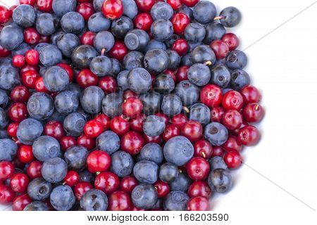 blueberries and cranberries (cowberries) on the white background