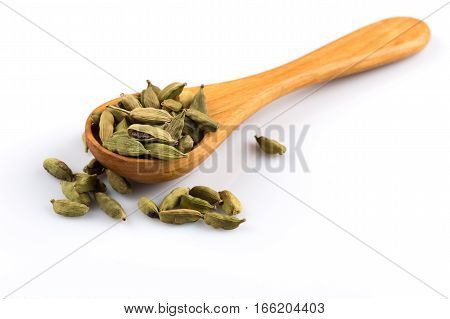 Cardamom Isolated On White
