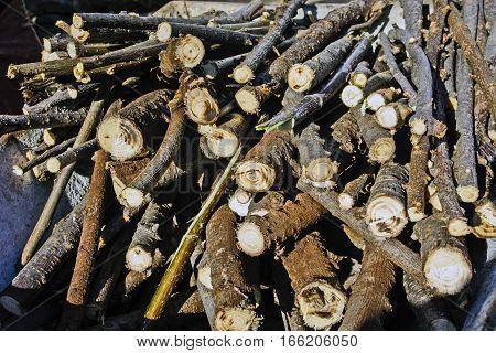 Small firewood cut and arranged in a wheelbarrow.