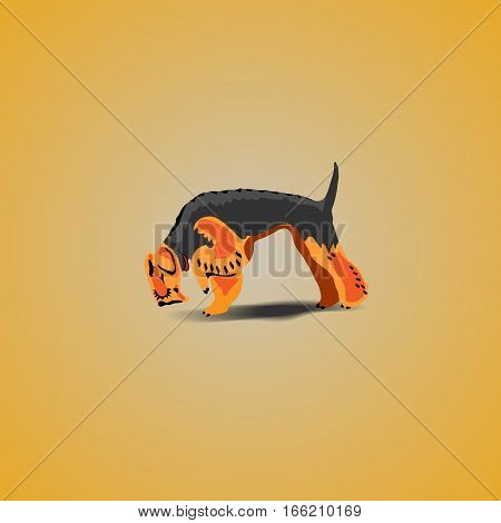 illustration of Dog Airedale Terrier yellow and brown