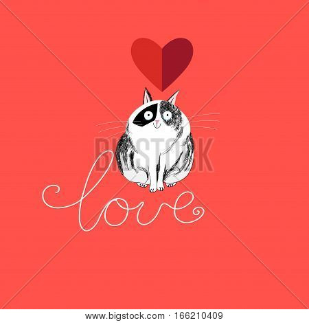 Lover funny cat on a red background with a heart
