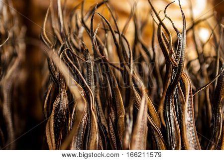 Close up of dried eel on Bukittinggi market Pasar atas