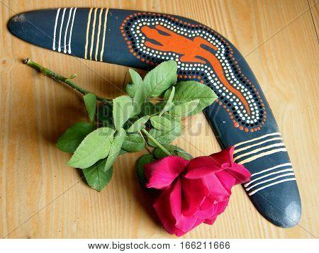 Australian boomerang and rose in Or Yehuda Israel November 20 2010