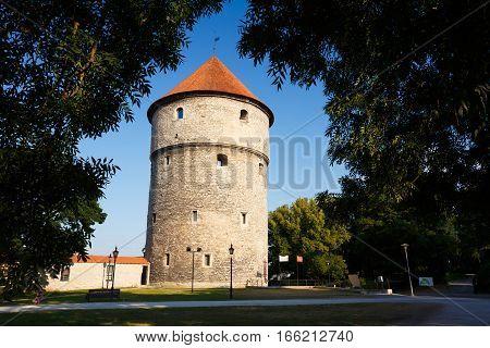 Tallinn, Estonia. Medieval Tower Kiek-in-de-Kok In Park On Hill Toompea