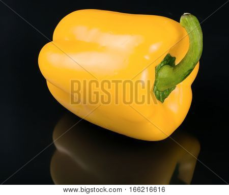 one yellow sweet pepper on black background.