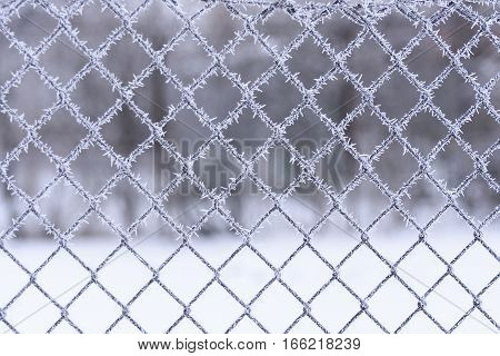 Background of a mesh fence covered with frost.