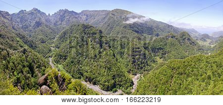 Laurel Forest On Madeira Island, Portugal