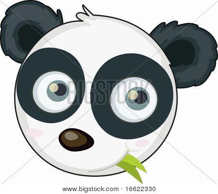 illustration of panda face on white
