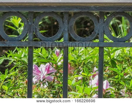 A black iron fence with circle design