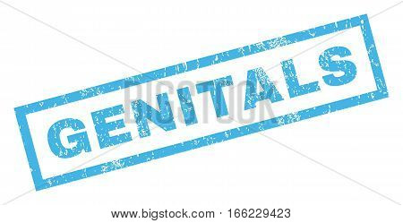 Genitals text rubber seal stamp watermark. Caption inside rectangular shape with grunge design and scratched texture. Inclined vector blue ink sticker on a white background.